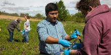 Dr. Muthu Venkateshwaran and his student researchers collect soil samples for prairie soil microbiome project.