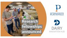Dairy Innovation Hub Fellowships